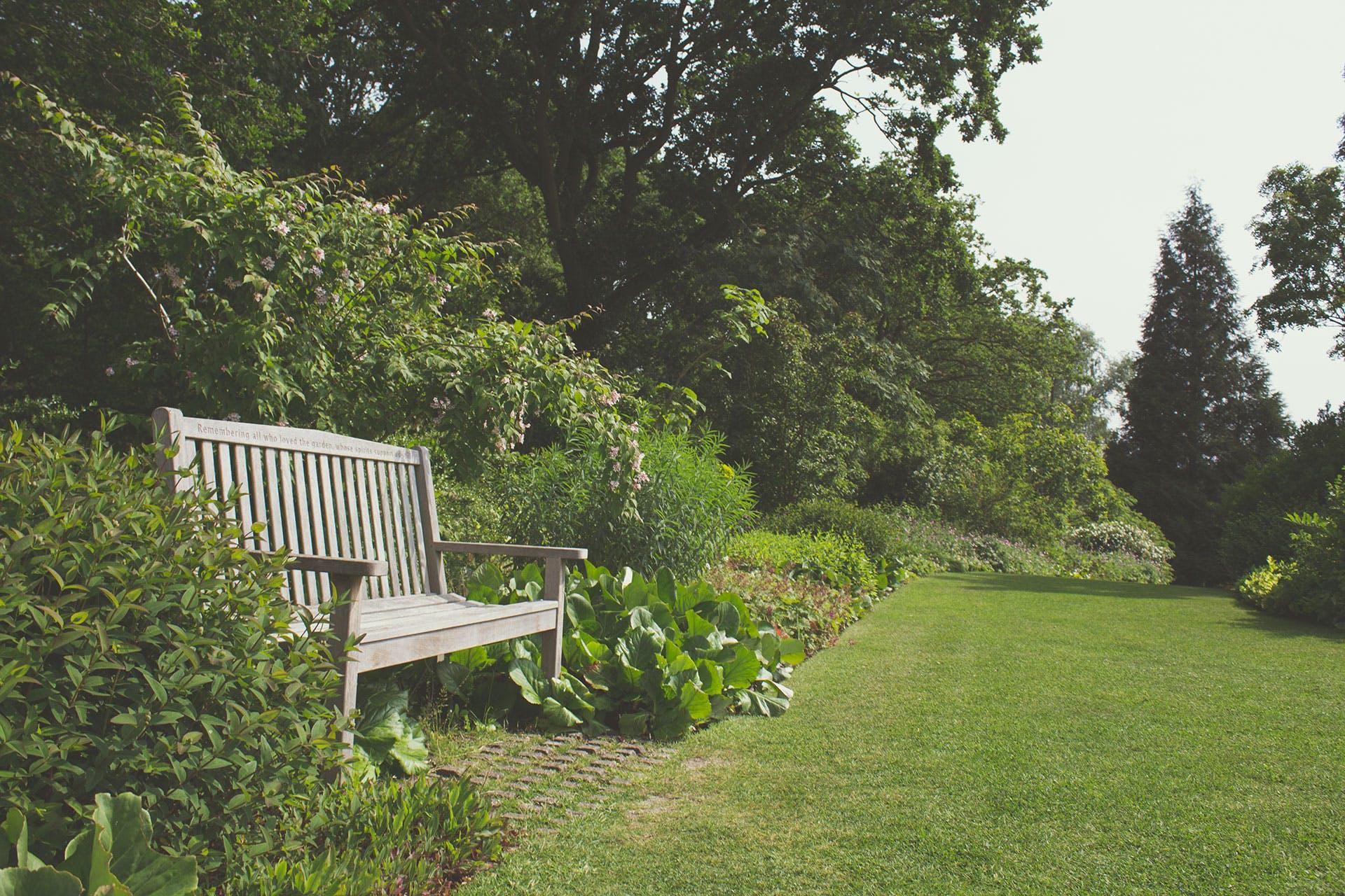 Foto profissional grátis de jardim
