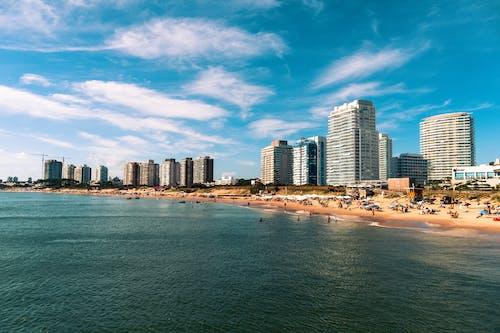 High Rise Buildings Near Sea Under Blue Sky