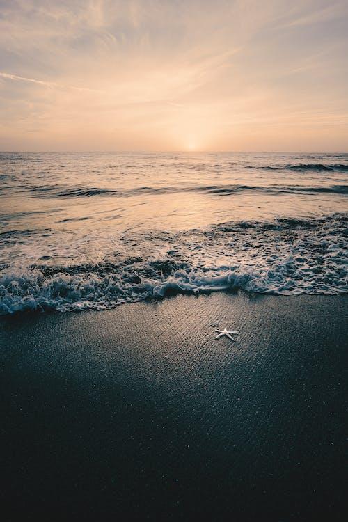 Ảnh lưu trữ miễn phí về ánh sáng, bão táp, biển