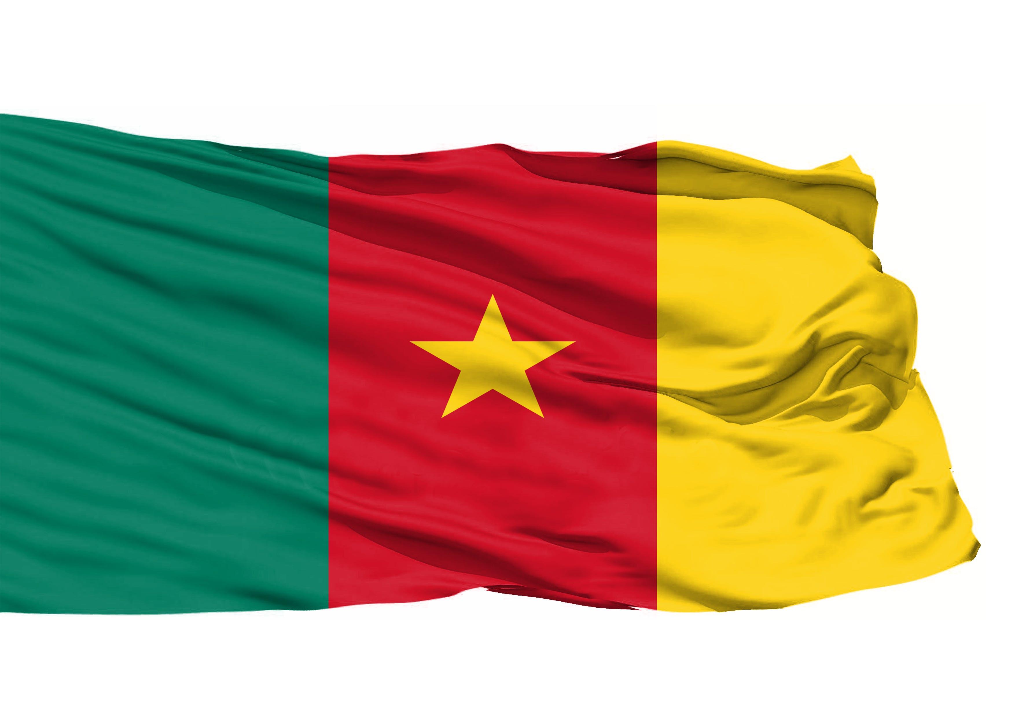 Kostenloses Stock Foto zu nationalflagge, 3d-flagge, kamerun 3d flagge