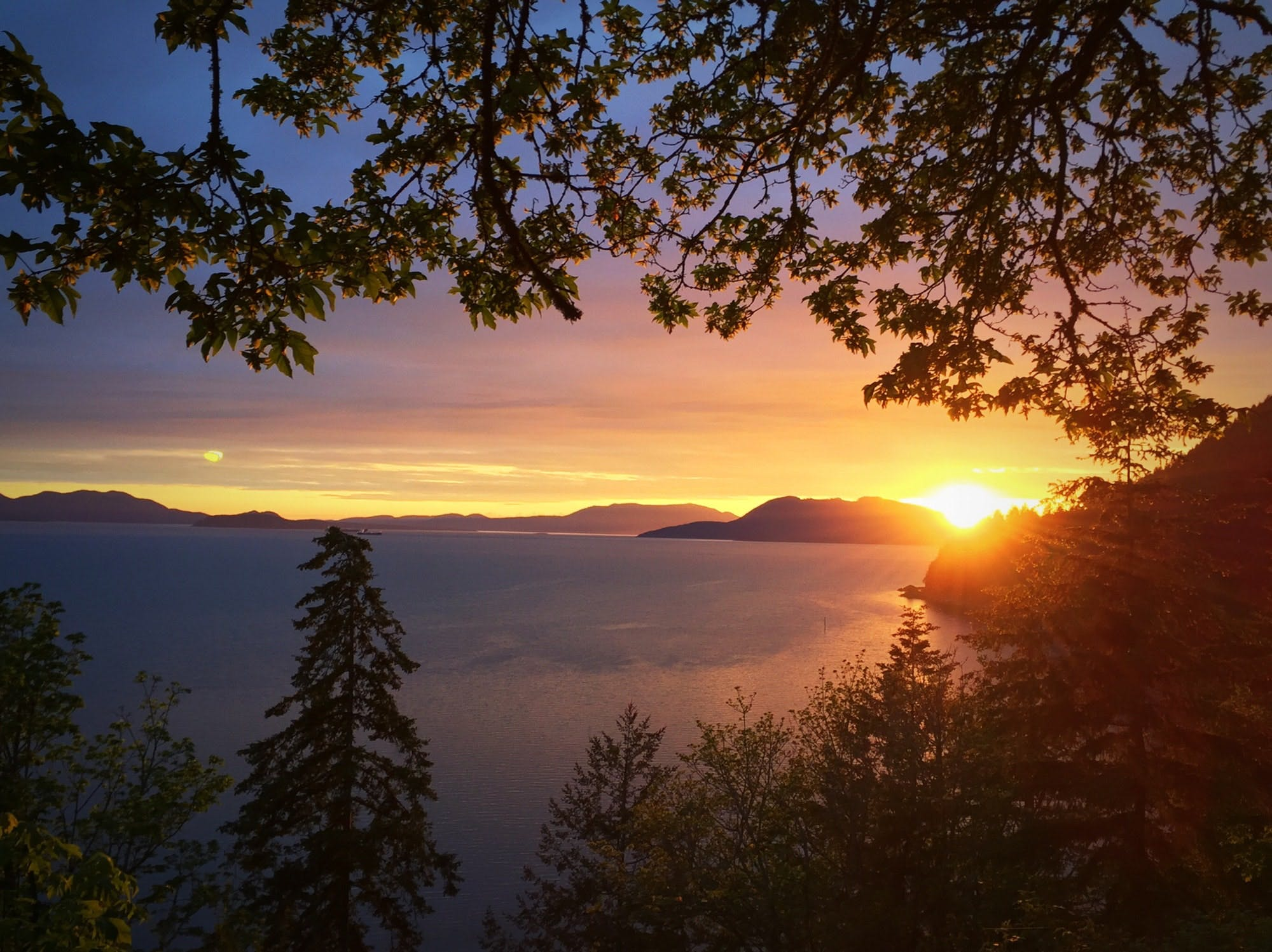 Free stock photo of Sunset Dawn