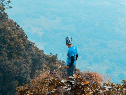 Imagine de stoc gratuită din alpinism montan, alpinist, arbori, codru