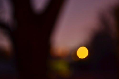 Free stock photo of black, moon, night
