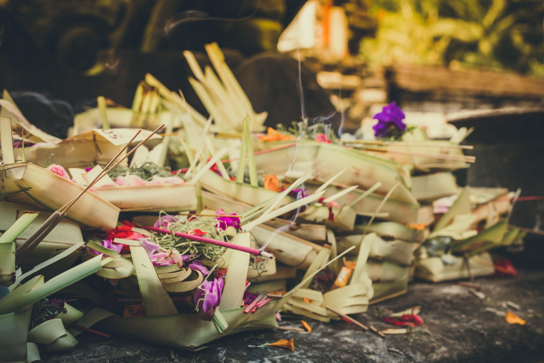 Beige Coconut Leaves