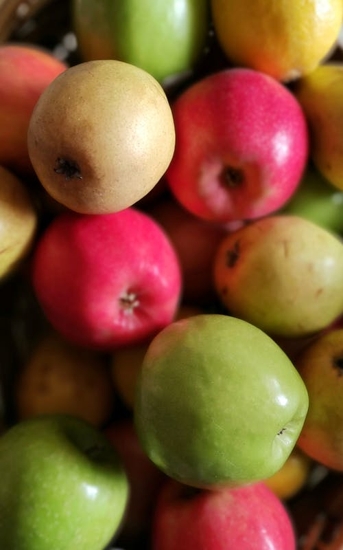 Free stock photo of apple, apples, bowl of fruit