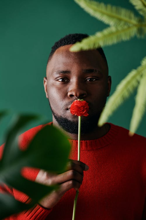 A Bearded Man Holding a Red Flower