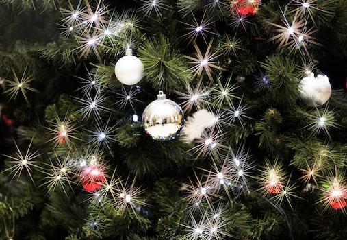 Free stock photo of decoration, christmas, decor, decorations