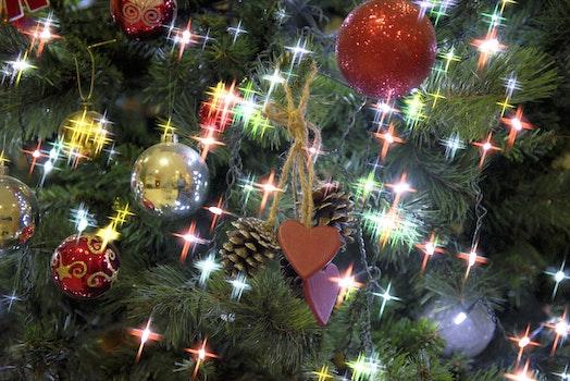 Free stock photo of decoration, christmas, decor