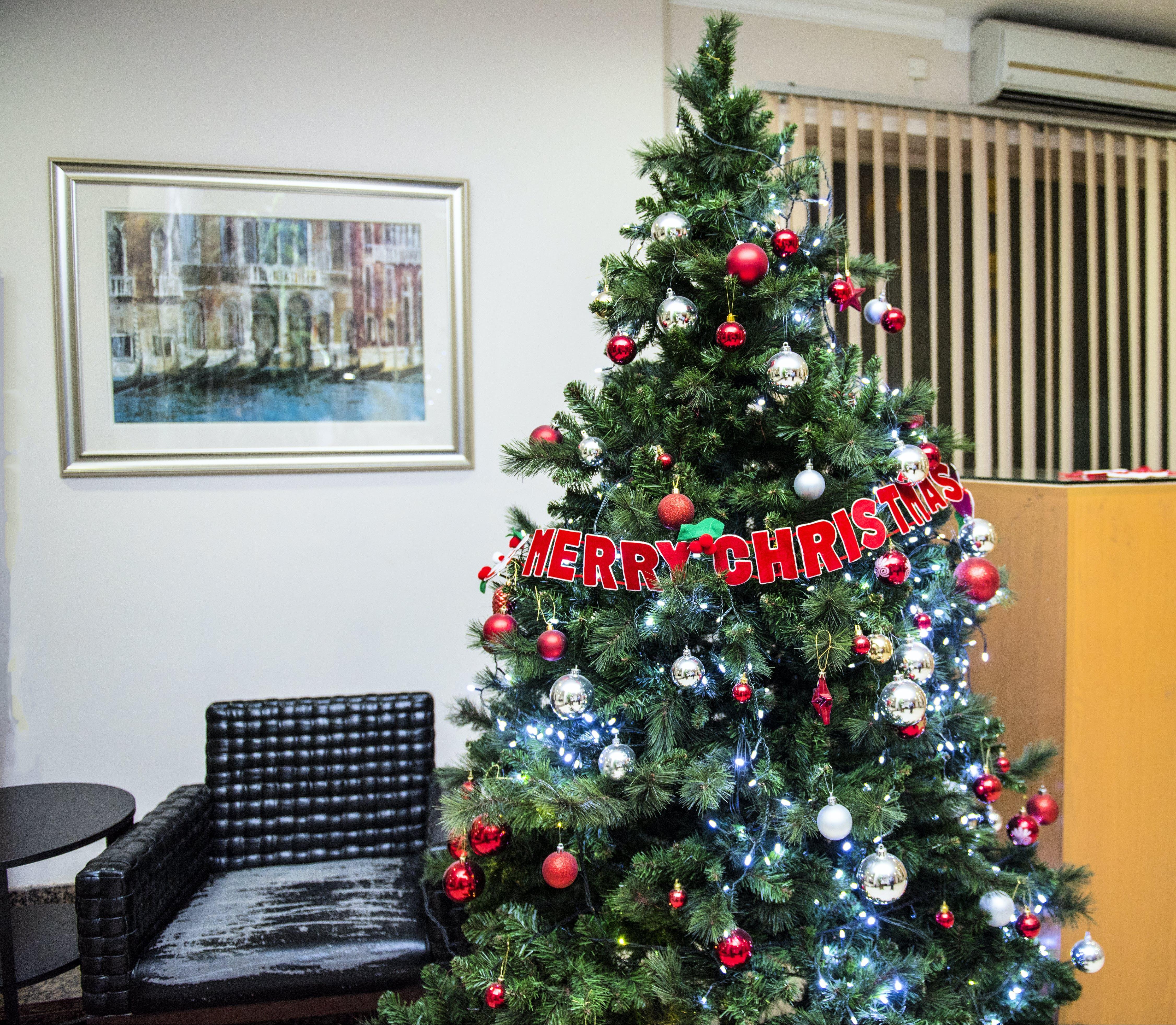 Ingyenes stockfotó árnyékolók, belsőépítészet, boldog Karácsonyt, csillog témában