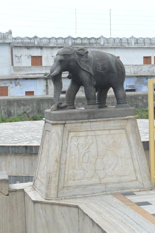 Free stock photo of elephant, elephant idol, temple