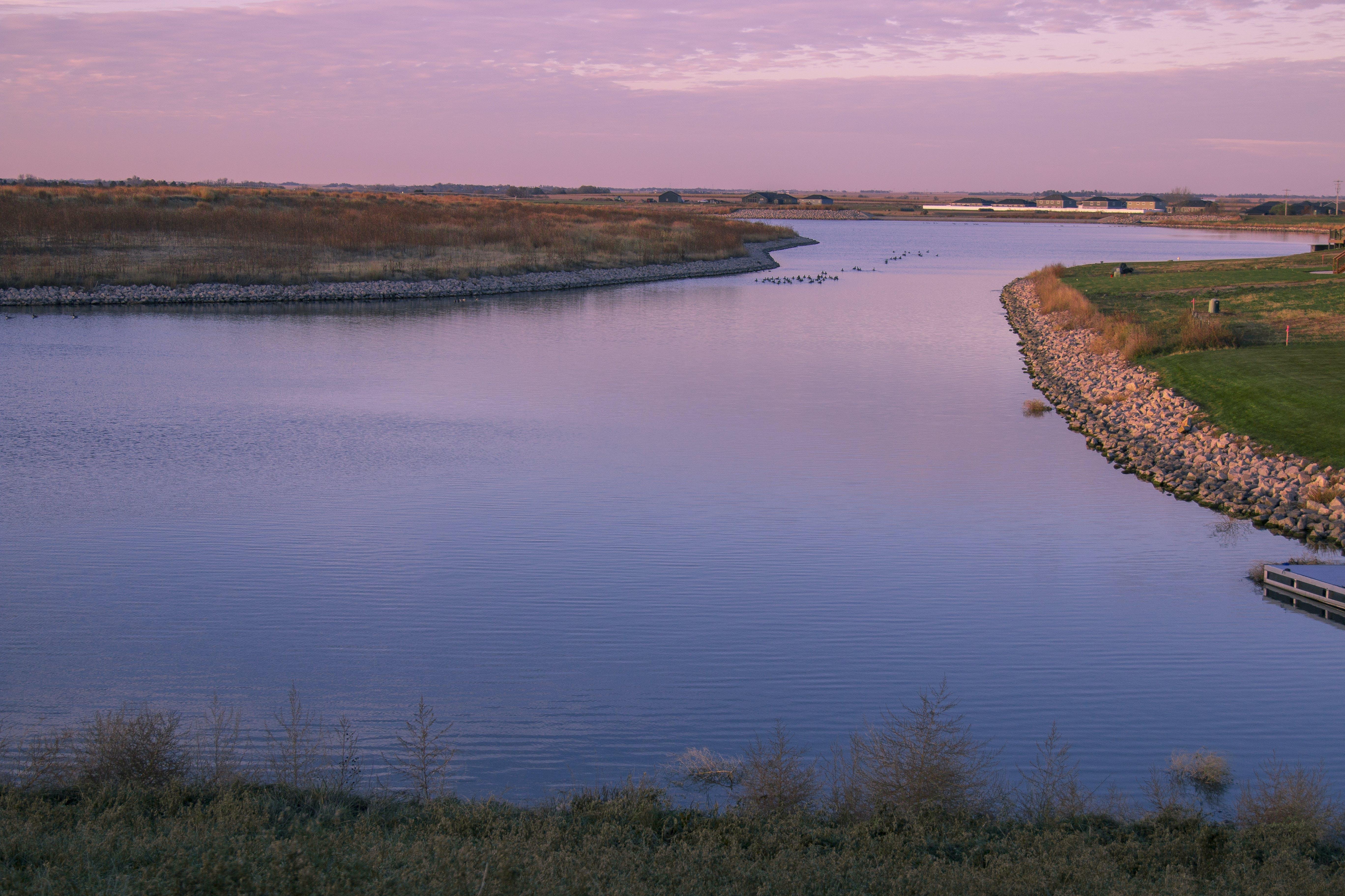 Free stock photo of flat, geese, lake, nebraska