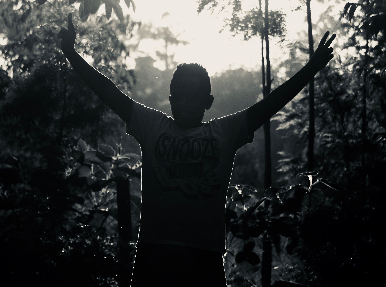 Imagine de stoc gratuită din alb-negru, arbori, backlit, băiat