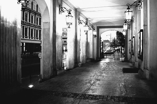 Free stock photo of nature, culture, blackandwhite, wroclaw