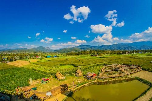 Бесплатное стоковое фото с азиатский, Азия, вода, восточный