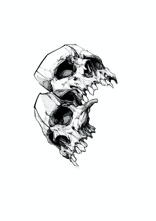 Free stock photo of arts and crafts, hand drawing, skull background