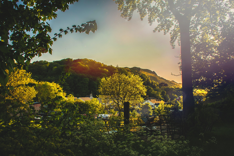 Kostenloses Stock Foto zu atmosphärisch, bäume, berg, berge