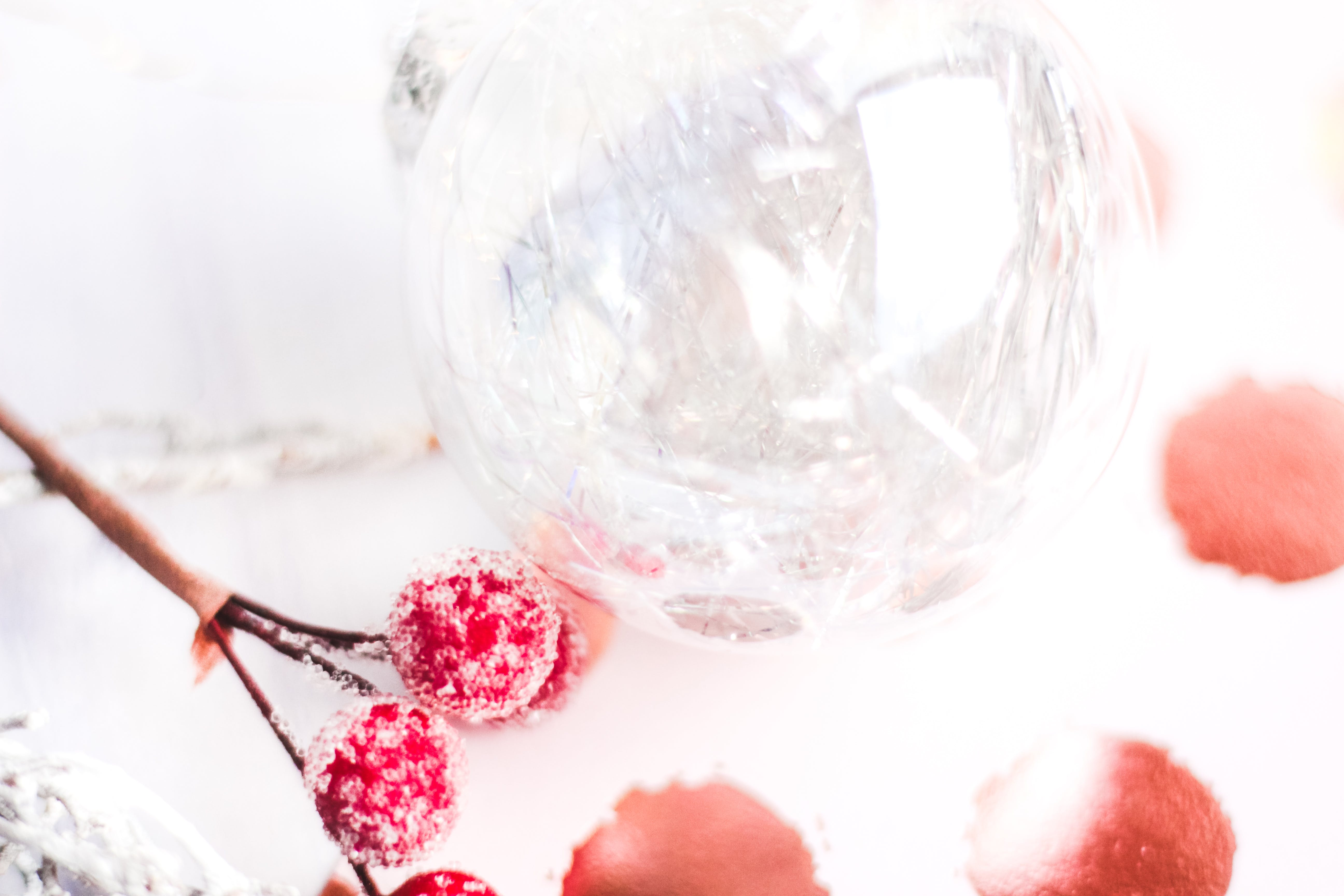 Selective Focus Photography of Frost Covered Red Cherries