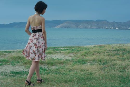 Безкоштовне стокове фото на тему «берег моря, берег океану, вода, гори»