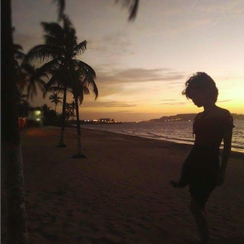 Foto d'estoc gratuïta de amors, cabells curts, crepuscle, dolçor