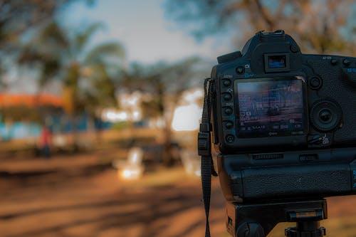 Photos gratuites de Analogique, appareil photo, appareil photographique reflex numérique, brouiller