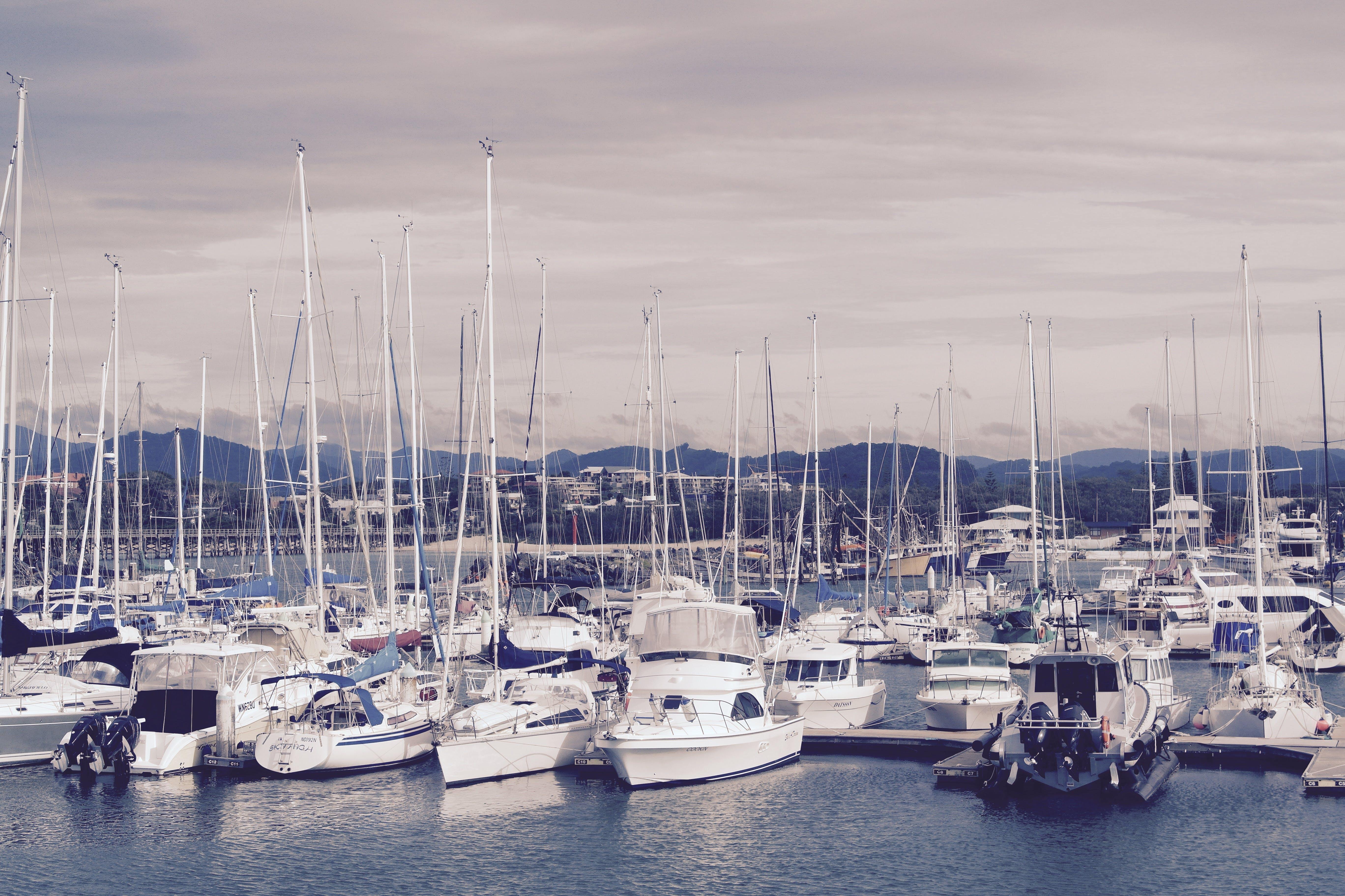 Imagine de stoc gratuită din ambarcațiuni, ambarcațiuni cu vele, apă, bărci