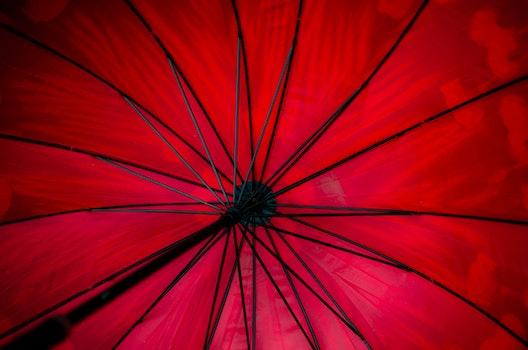 Black Steel Framed Red Umbrella