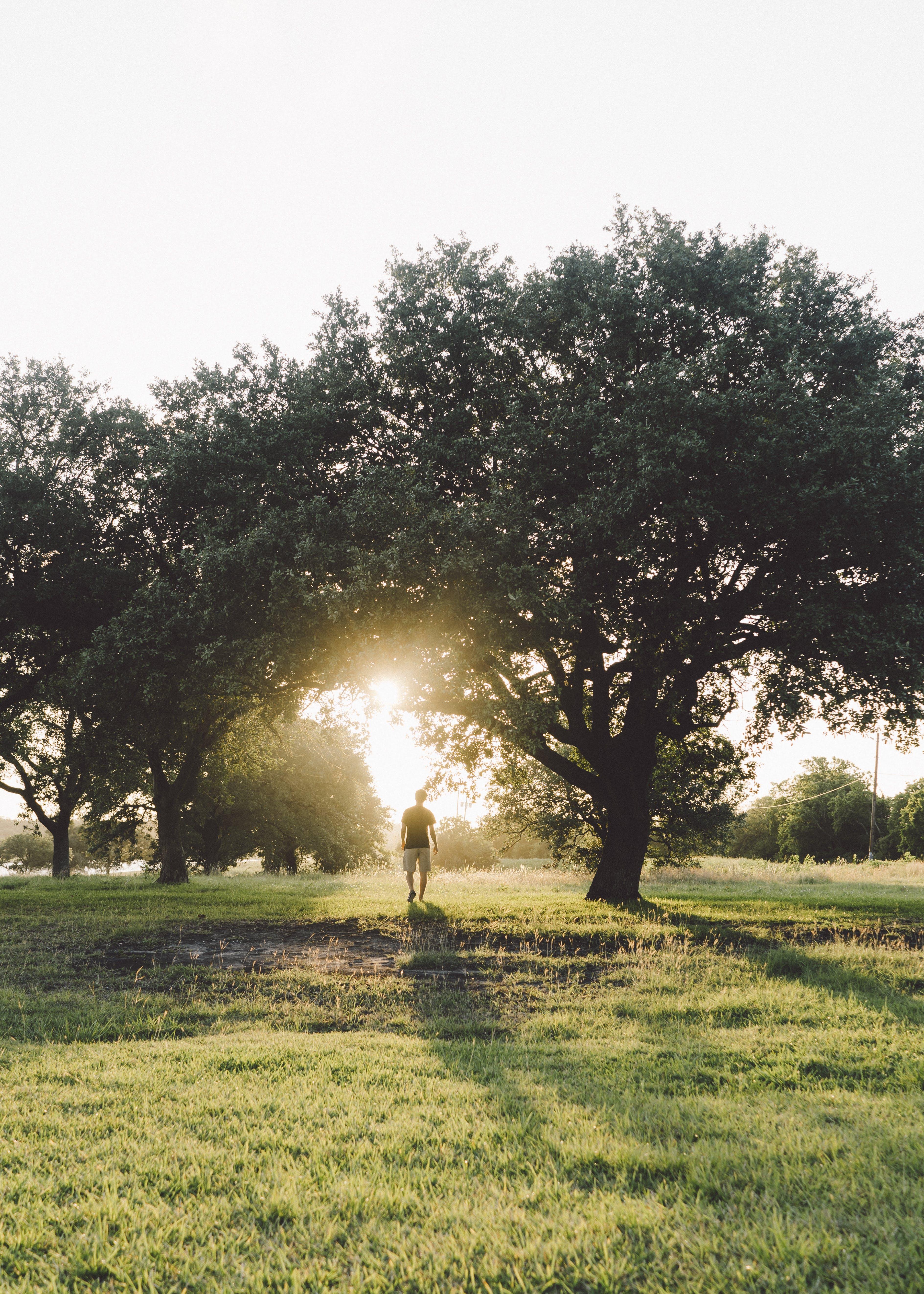 Man Walking during Sunrise