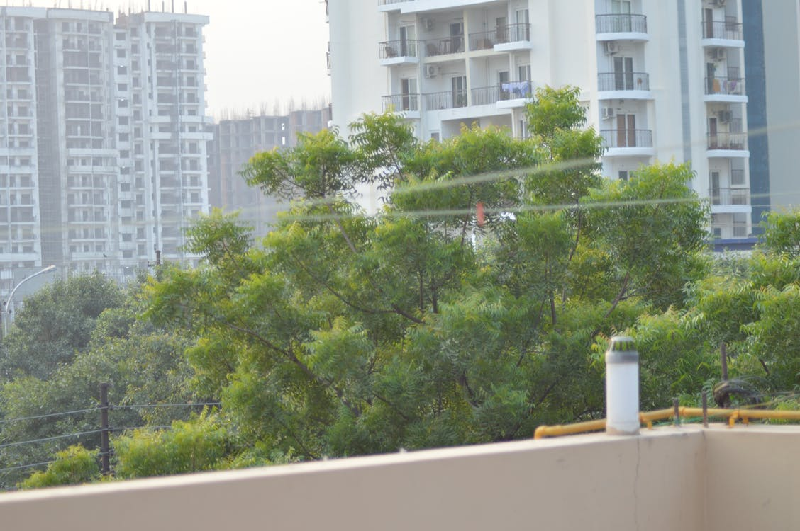 Free stock photo of apartment, building, greenery