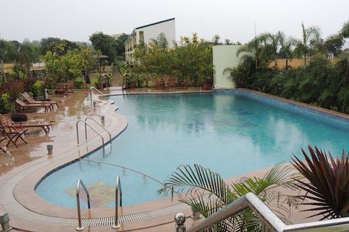 Free stock photo of resort, swimming pool