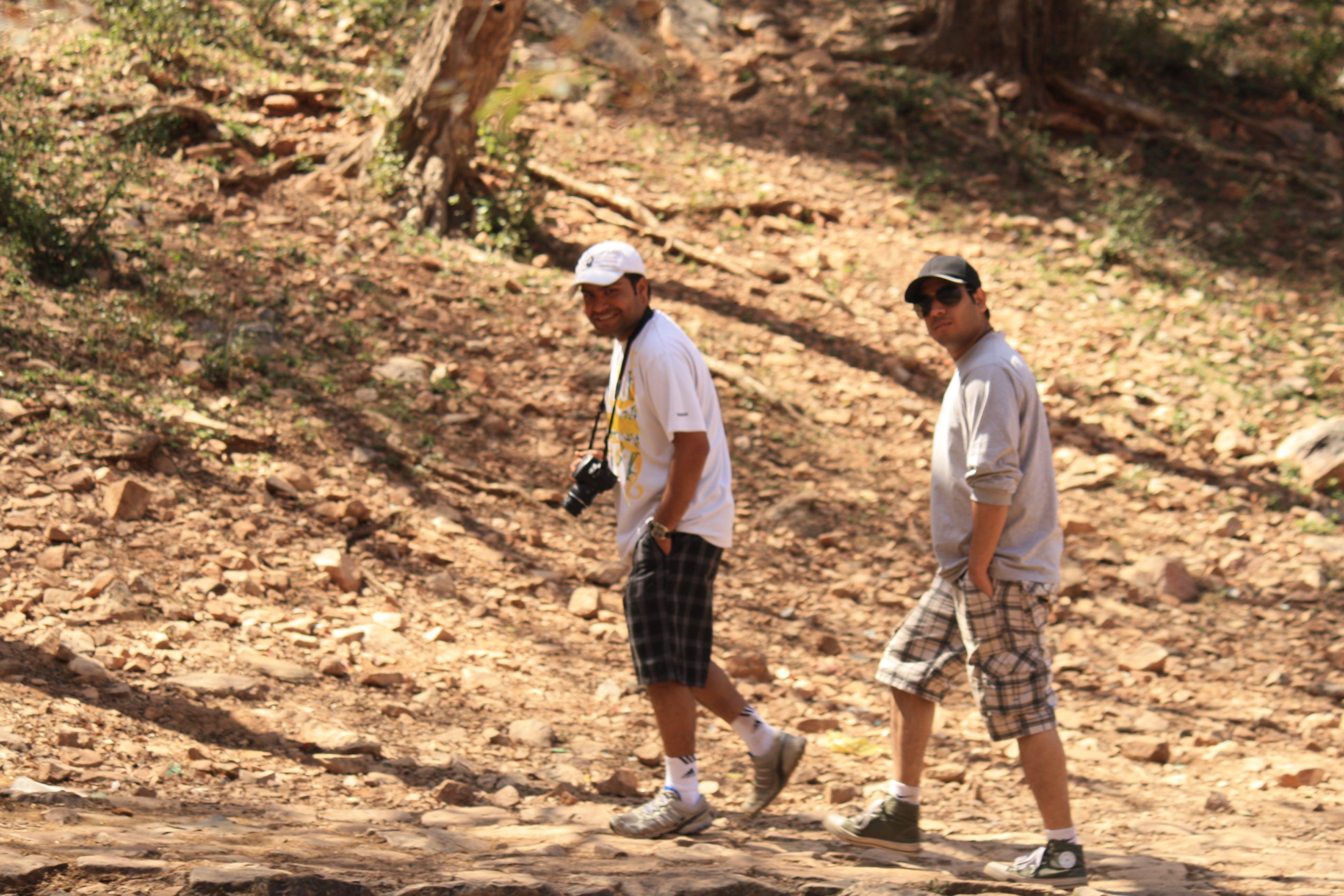 Free stock photo of friends, Jungle Walk
