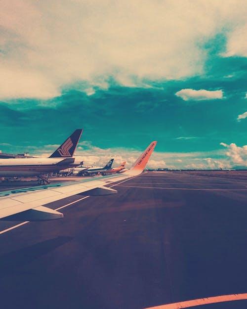 コンクリート, ジェット機, フライト, 交通機関の無料の写真素材