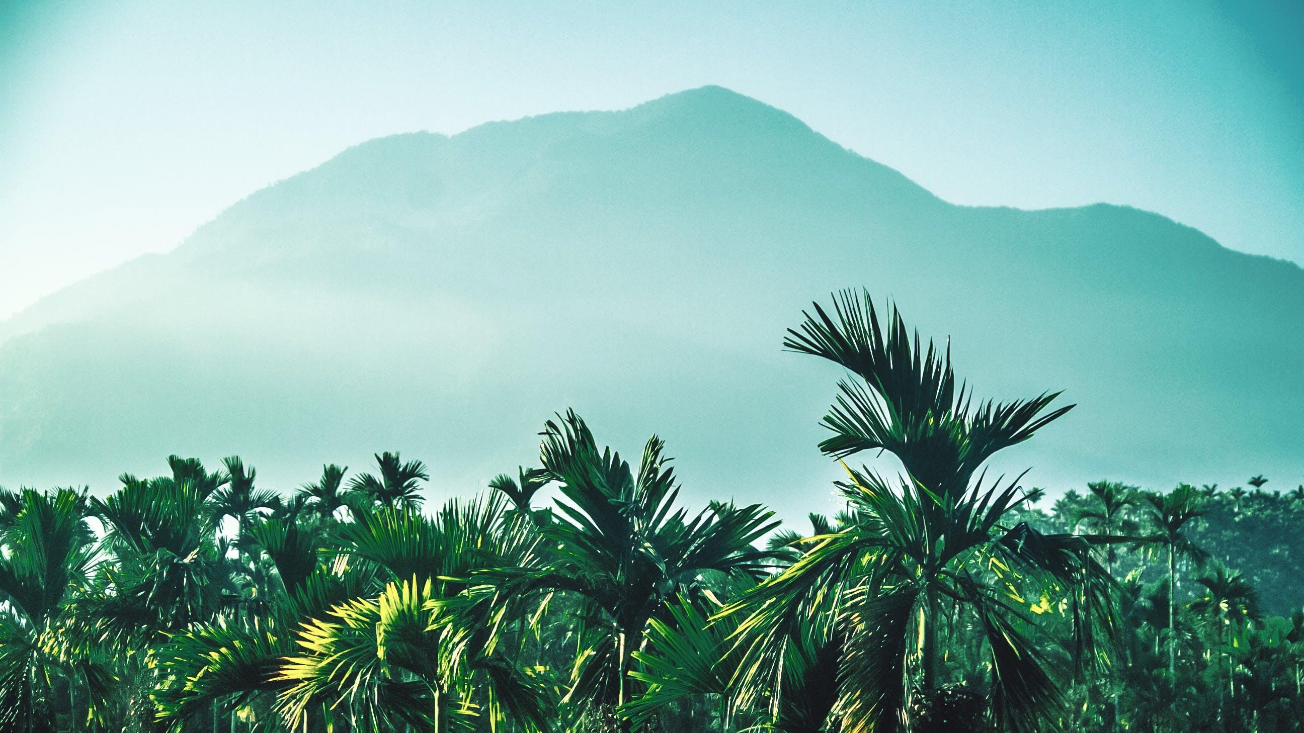 açık hava, Çiftlik, dağ, doğa içeren Ücretsiz stok fotoğraf