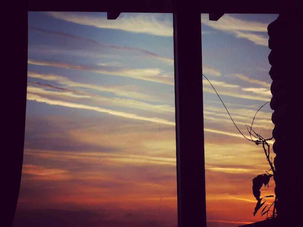 Free stock photo of morning sun, sunset