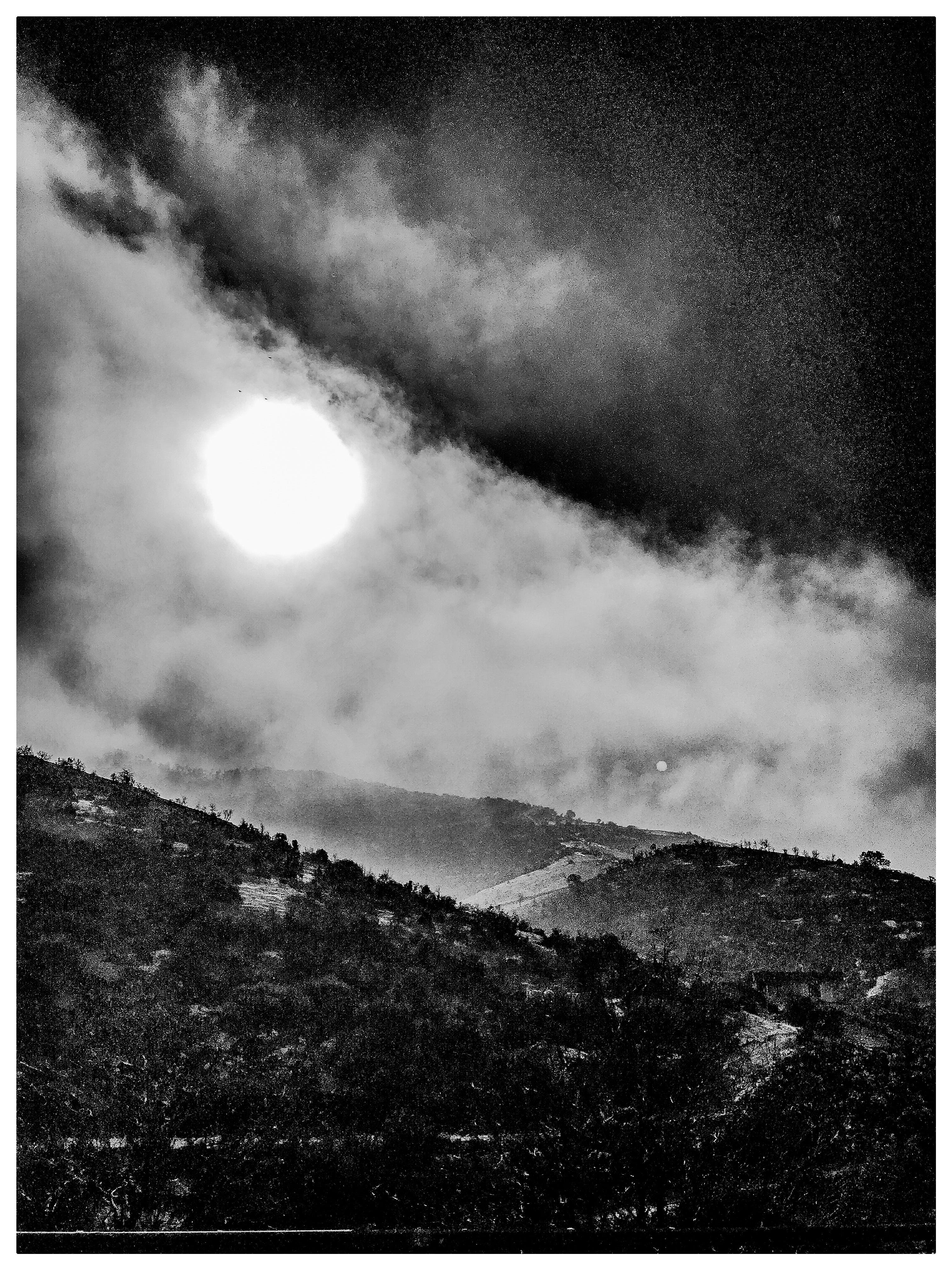 Grayscale Photo of Moon and Forest