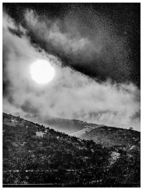 คลังภาพถ่ายฟรี ของ จันทรา, ตอนเย็น, ต้นไม้, ท้องฟ้า