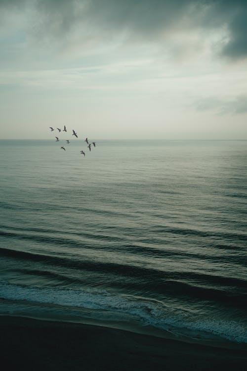 Gratis stockfoto met atlantische oceaan, avond, buiten