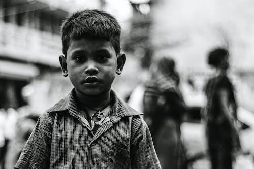 兒子, 兒童, 可愛的, 小孩 的 免费素材照片