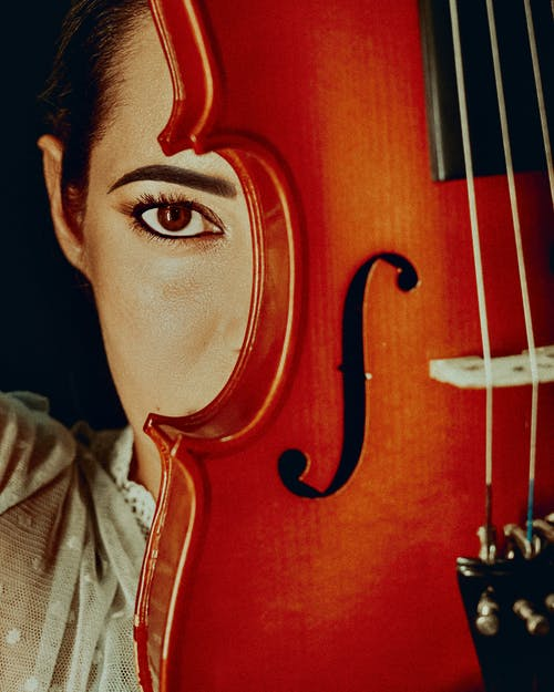 Free stock photo of art, artistic, bowed stringed instrument