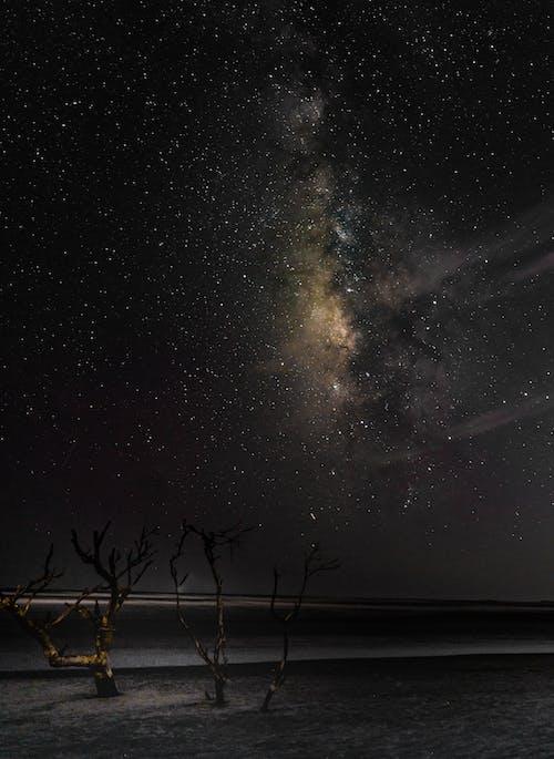光, 光線, 天文學, 天空 的 免費圖庫相片