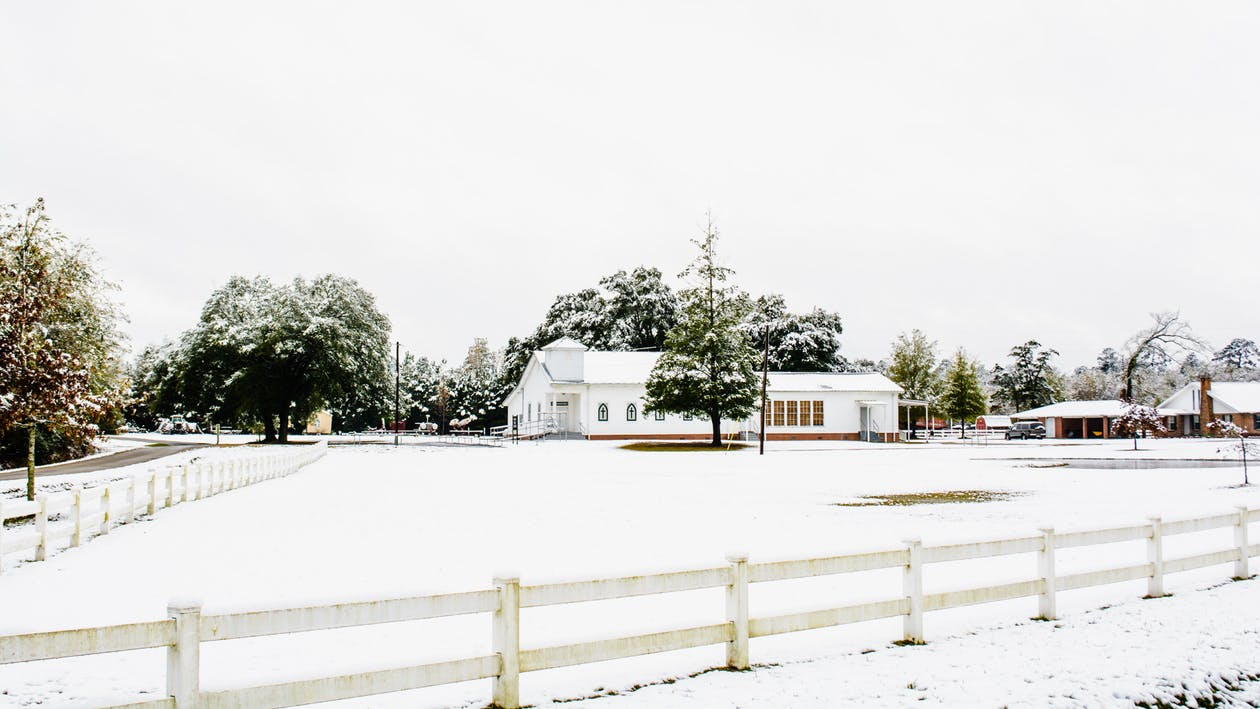 Free stock photo of Louisiana Snow
