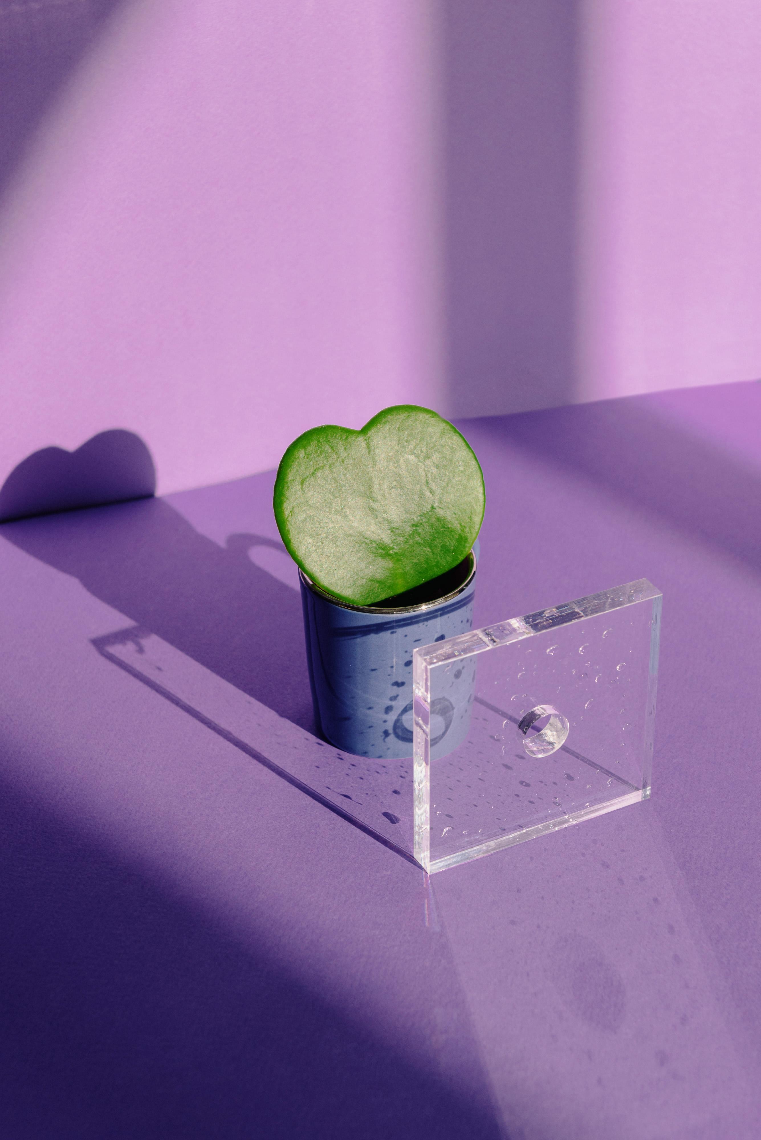love summer abstract pot