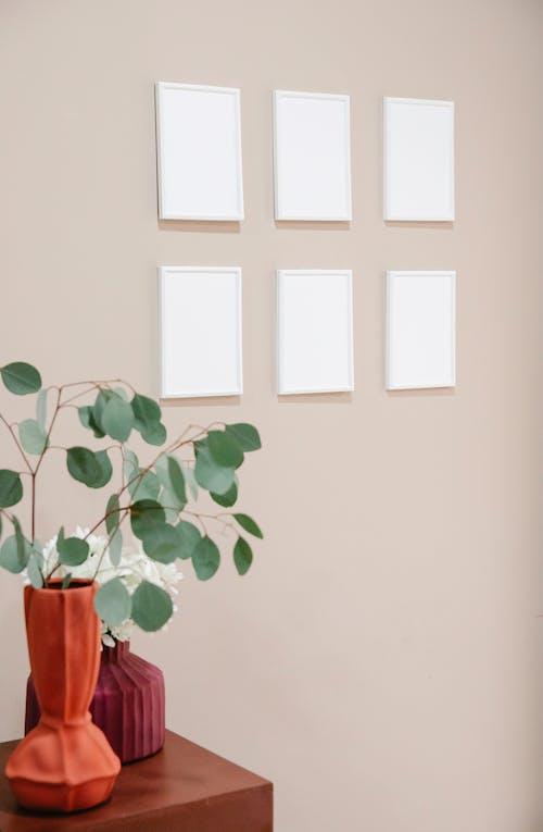 Fotos de stock gratuitas de adentro, amable, apartamento