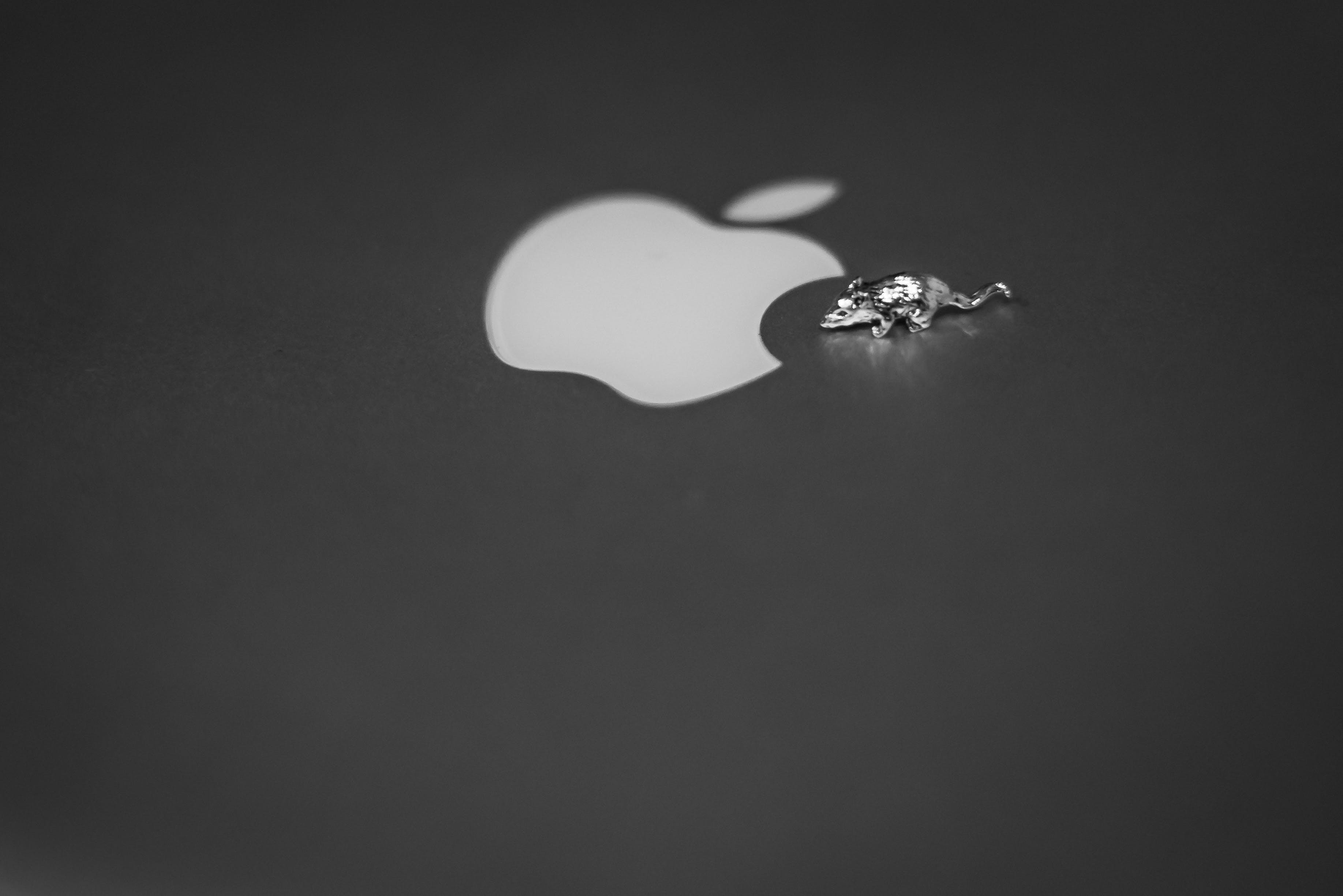 Free stock photo of night, apple, mouse, miniature