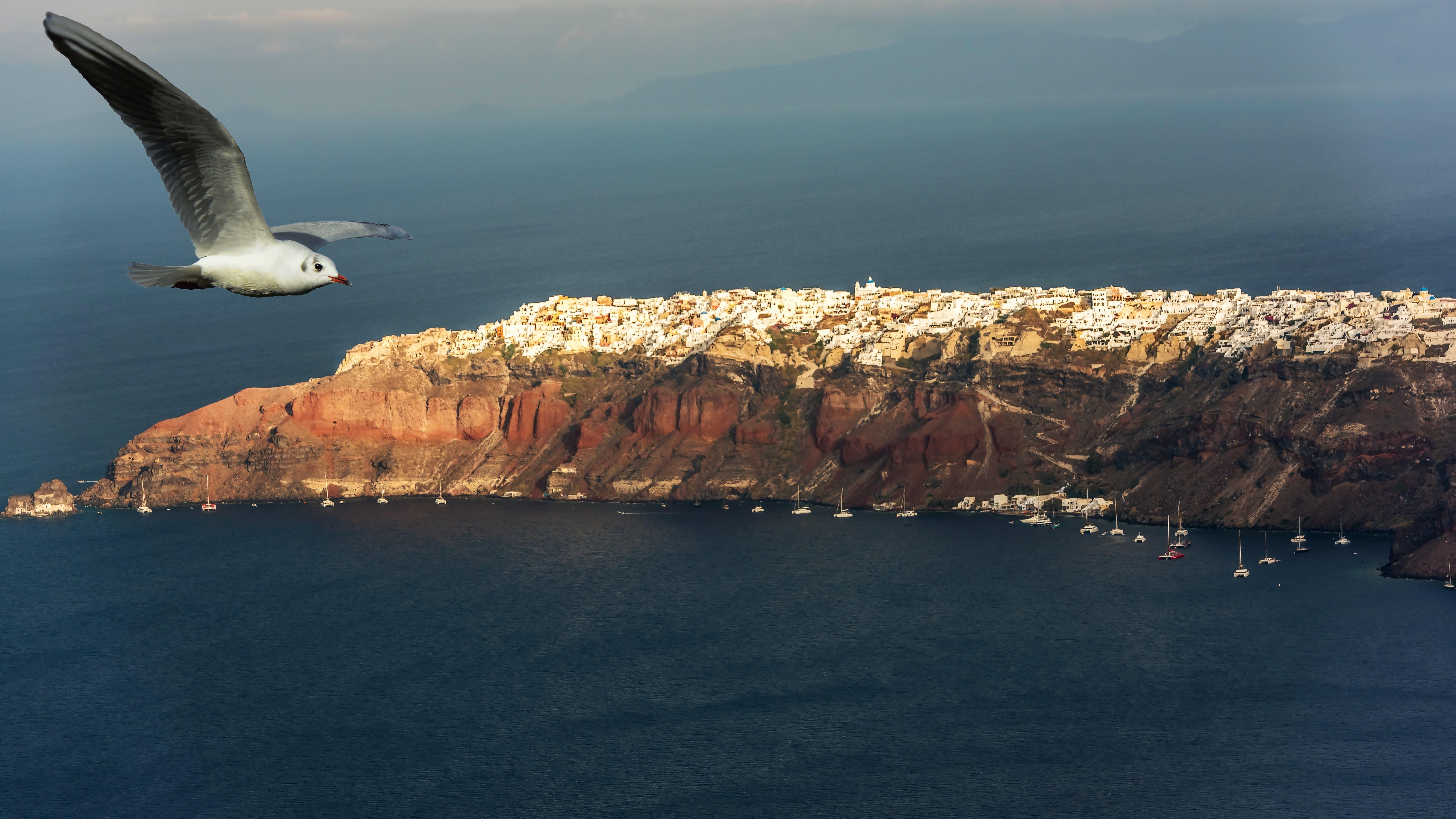 Free stock photo of sea, summer, island, air