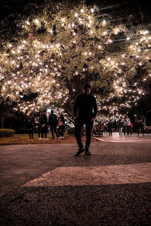 Free stock photo of diartob, lights, man