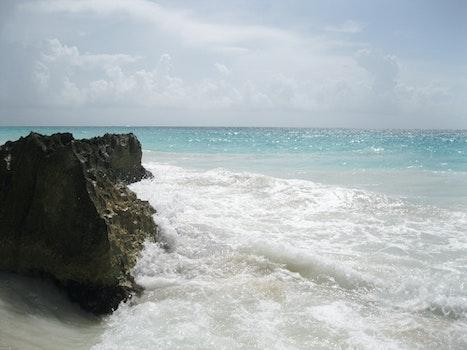 Free stock photo of sea, waves, coast, rock