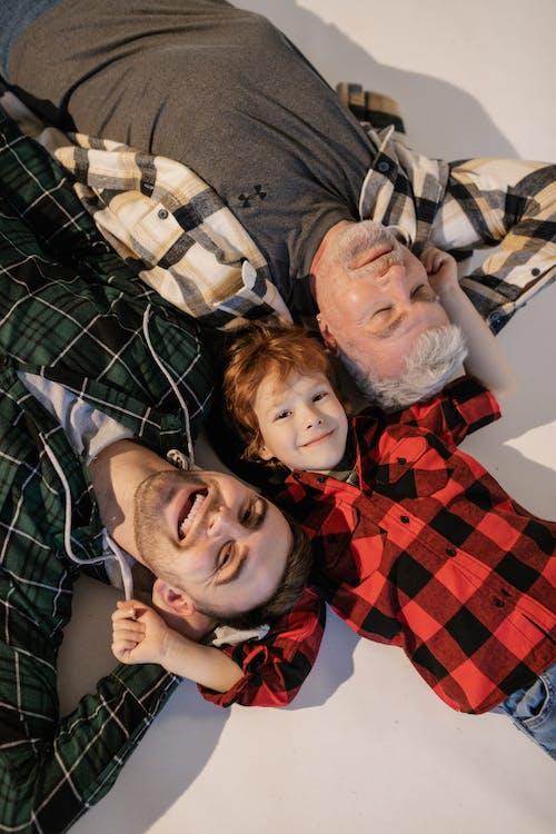 คลังภาพถ่ายฟรี ของ การมอง, การอยู่ร่วมกัน, ครอบครัว