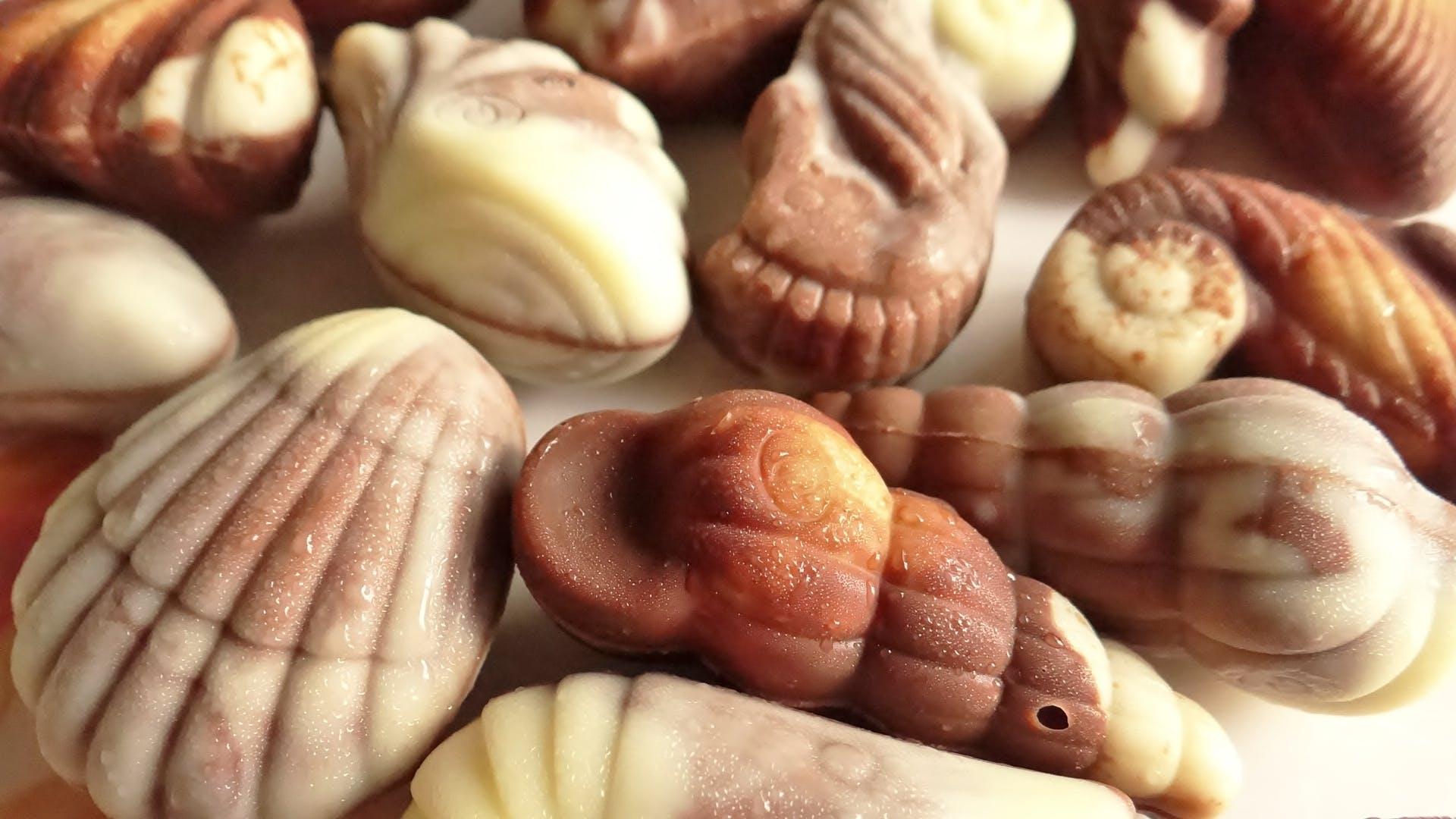 Free stock photo of 365 photos, chocolate, chocolate shells, food