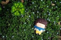 grass, toy, boy