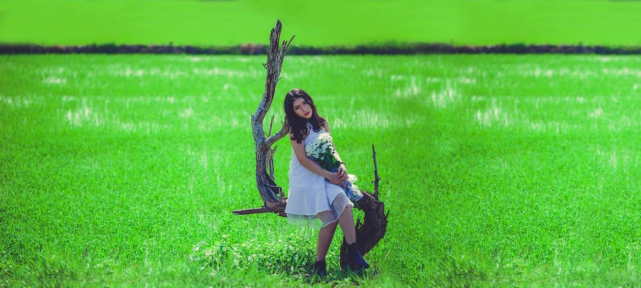 Foto d'estoc gratuïta de a pagès, asiàtica, bonic